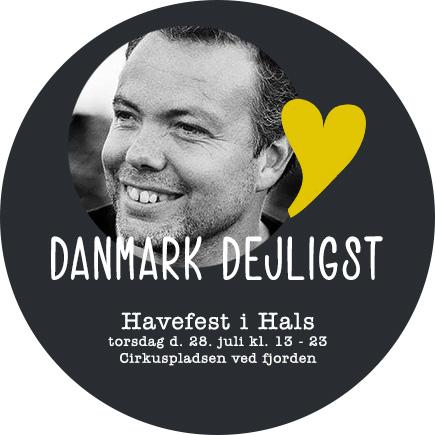 havefest4