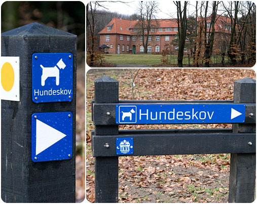 hundeskov-collage